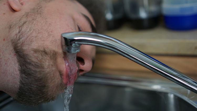 Boris trinkt Wasser direkt aus der Leitung